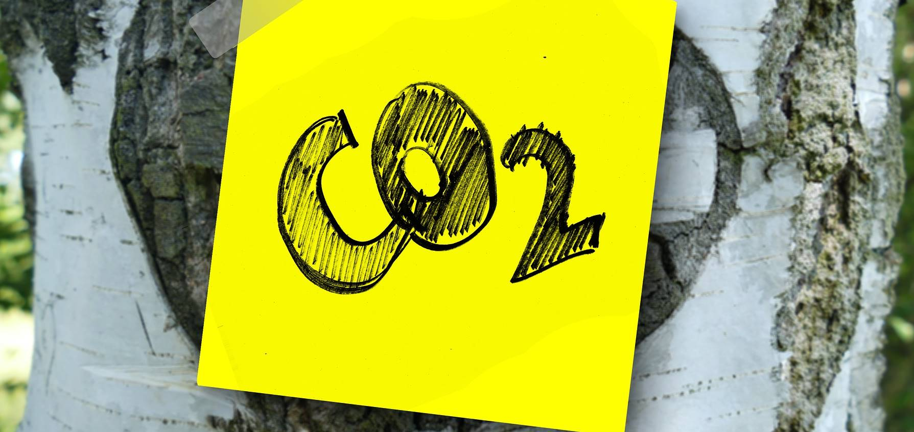 Gelders college daagt bedrijven uit om CO2-uitstoot te verminderen
