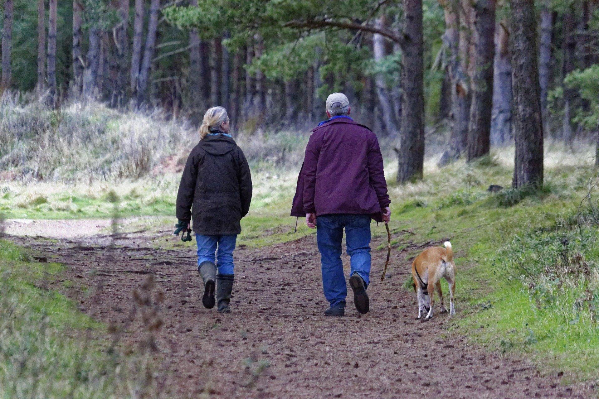 Wandelen, walking, hiken: geen trend, we doen het allemaal!