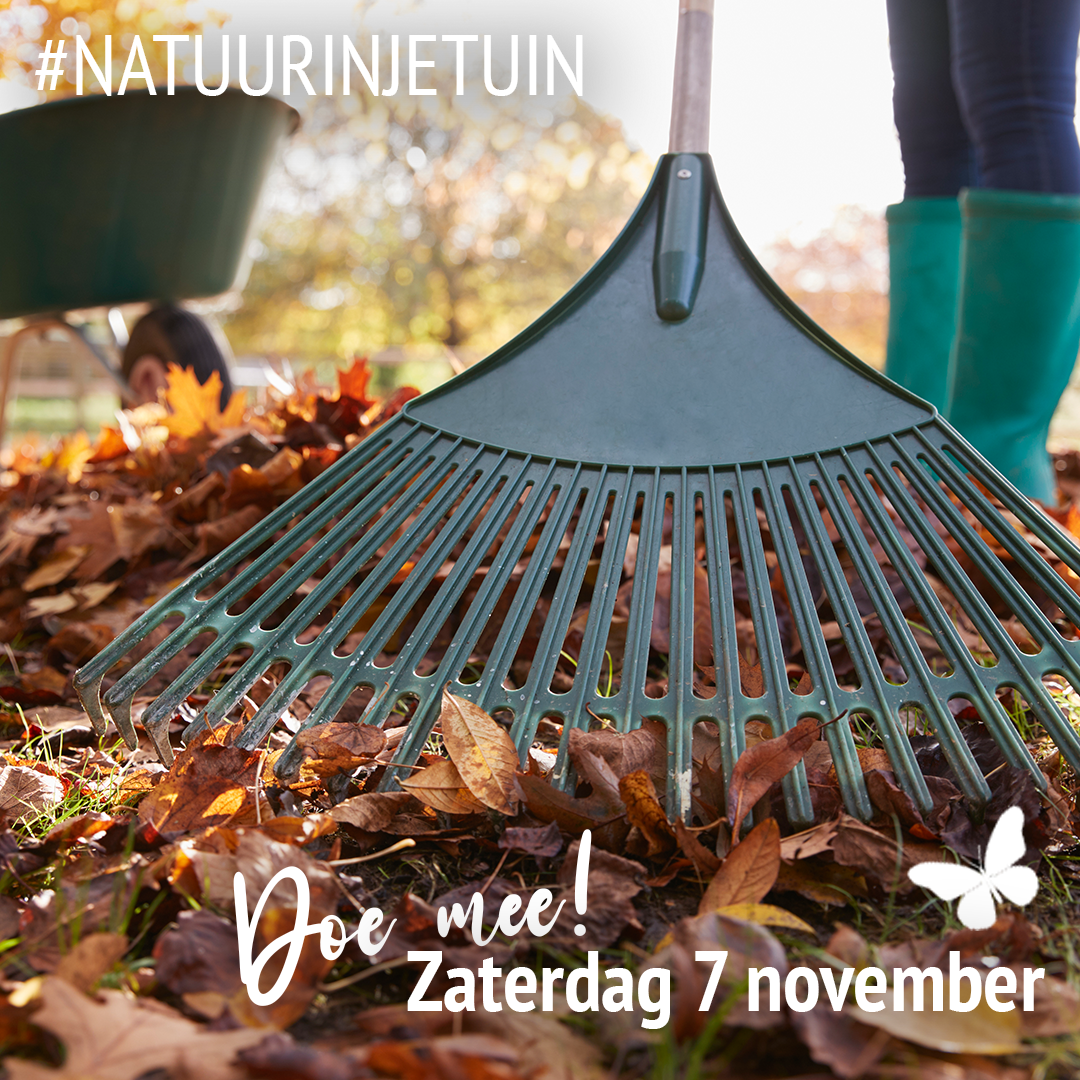 Doe mee met de actie #natuurinjetuin op 7 november