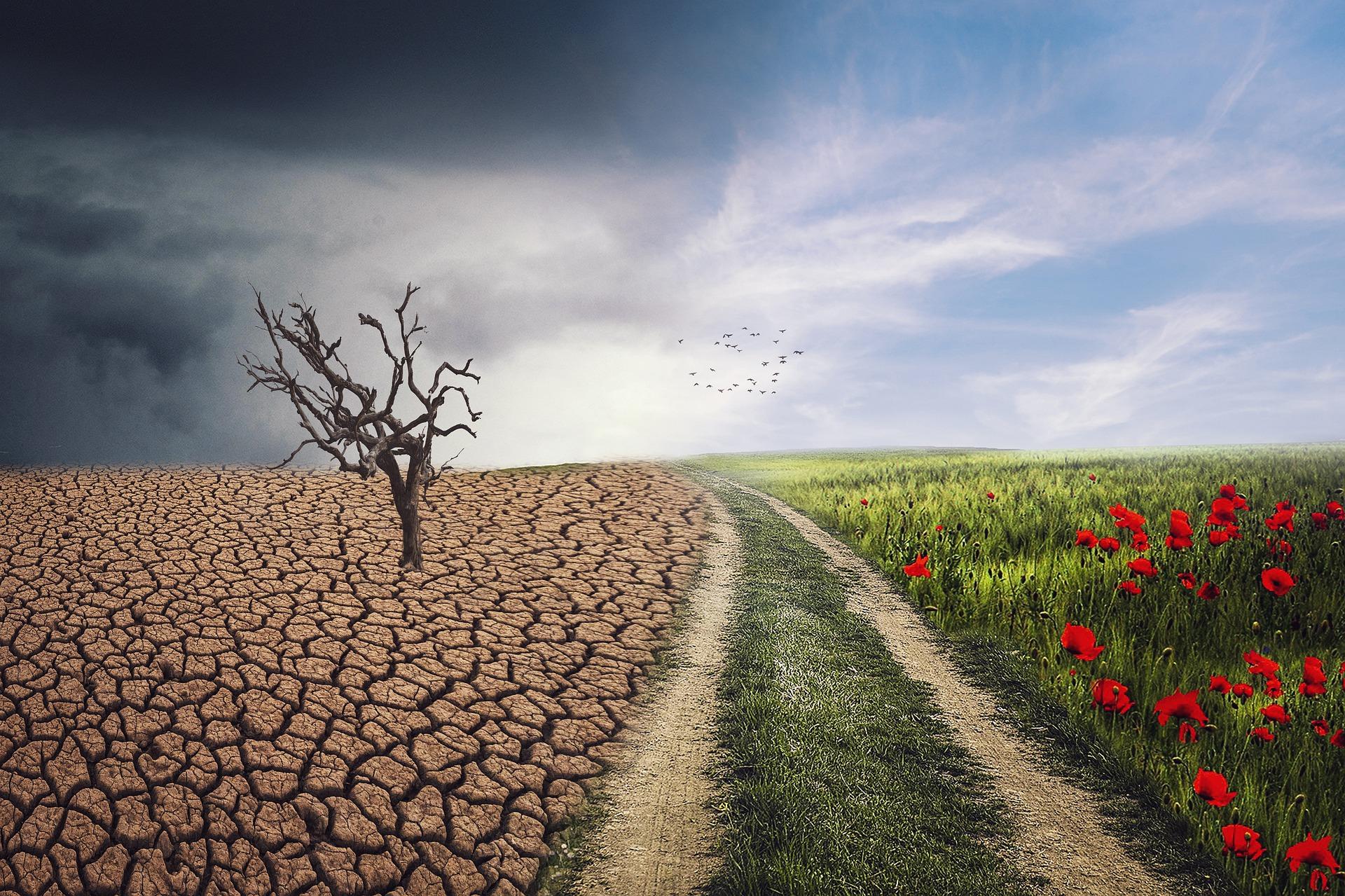 Kiezer wil dat volgend kabinet grote vervuilers aan Klimaatakkoord Parijs houdt